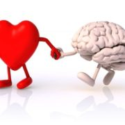 Heart and brain walking
